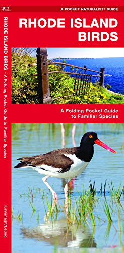 Rhode Island Birds: A Folding Pocket Guide to Familiar Species (Wildlife and Nature Identification) (Stores Ct Waterford In)