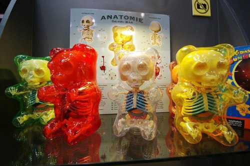 4D Master Gummi Bear Skeleton Anatomy Model Kit, Clear 51H5KDVkUrL