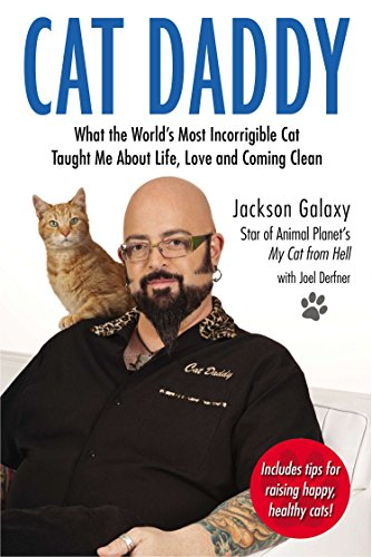 Cat Daddy: What the World's Most Incorrigible Cat Taught Me About Life, Love, and Coming Clean (Things To Know About Cats As Pets)