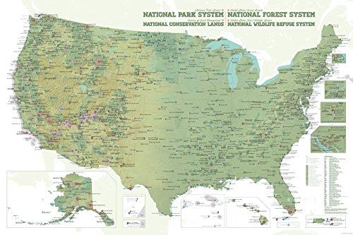 NPS x USFS x BLM x FWS Interagency Map 24x36 Poster (Army Green & (Agency Pin)