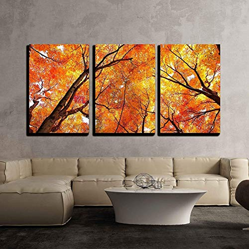 (wall26 - 3 Piece Canvas Wall Art - Maple Tree in Autumn - Modern Home Decor Stretched and Framed Ready to Hang - 24