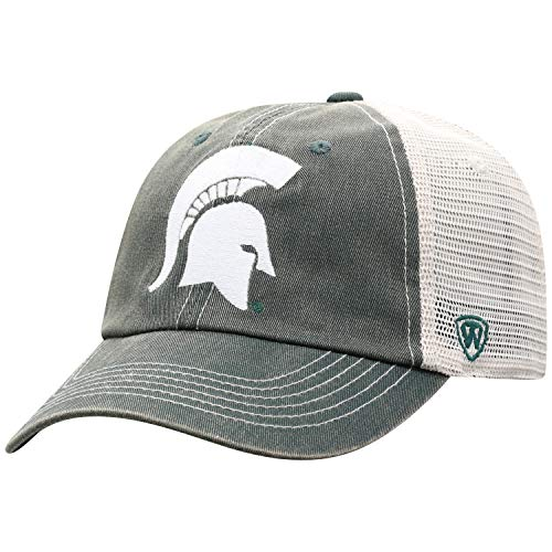 - Top of the World Michigan State Spartans Men's Vintage Hat Icon, Green, Adjustable