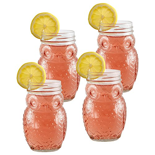 Glass Juice Pfaltzgraff (Pfaltzgraff Owl Glass Mason Jars, Set of 4)