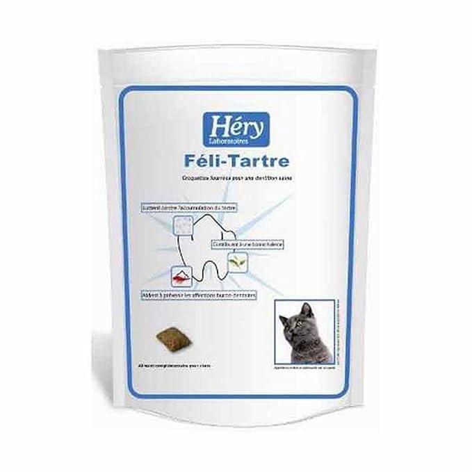 Féli-Tartre complément alimentaire pour hygiène buccale du chat - HERY