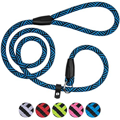 BronzeDog Dog Slip Lead 4ft Pet Rope Training Leash for Medium Large Dogs Black Blue Pink Grey Green Red (Blue)