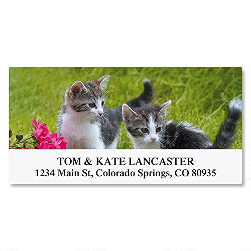 Cat Return Address Labels - Love of Cats Self-Adhesive, Flat-Sheet Deluxe Address Labels by Colorful Images (12 Designs), Count 144