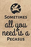 Sometimes All You Need Is a Pegasus: Novelty Notebook (6x9