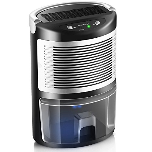 MISSPET Dehumidifiers for home, 1L Small