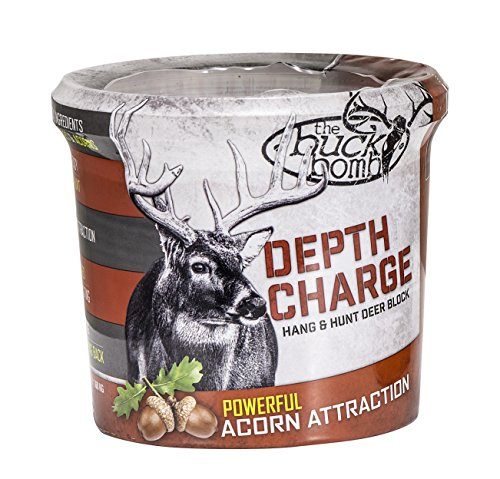Buck Bomb Attractant 200004 Depth Charge Hanging Attractant, Acorn