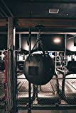 PRO Mountings - Heavy Punching Bag I Beam Mount for up to 300 lb Boxing Bags (1B-2100) | Easy Installation Directly onto Steel I Beams or Wooden Rafters | Noise & Vibration Reducing Ceiling Mount