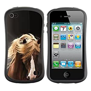Paccase / Suave TPU GEL Caso Carcasa de Protección Funda para - mane horse hair golden brown pet grey - Apple Iphone 4 / 4S
