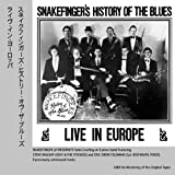 Snakefinger's History Of The Blues Live In Europe