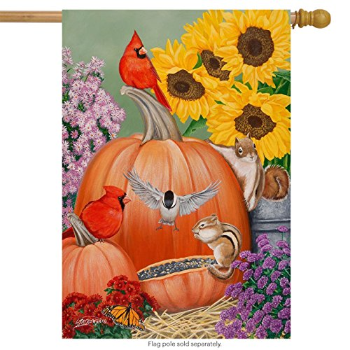 Briarwood Lane Fall Fiesta House Flag Pumpkins Cardinals Sunflowers 28