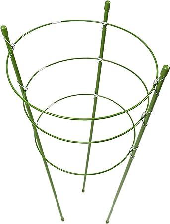 pezzi Baiyao anello di supporto per piante da giardino traliccio fiore in acciaio INOX sostegno Vegtables rampicanti e fiori e frutta Grow gabbia con 3 anelli regolabile 48//61 cm 45cm