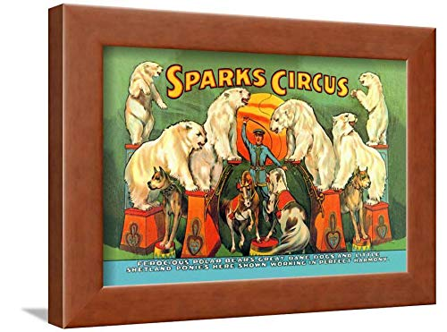 Sparks Circus - ArtEdge Sparks Circus Wall Art Framed Print, 9x12, Brown Unmatted