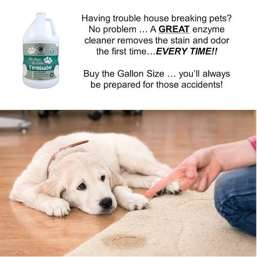 OFF BUBBAS Super Strength Commercial Enzyme CleanerPet Odor - Floor cleaner to remove dog urine