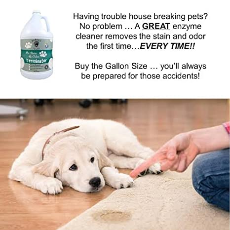 Home pro by design pet spotter