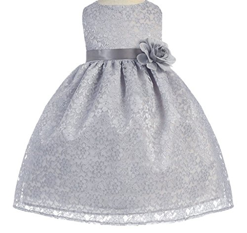 Little Baby Girls' Lovely Floral Lace Cute Wedding Easter Flowers Girls Dresses Silver Size 6M