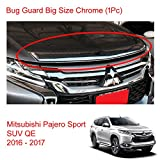 Powerwarauto Chrome Bug Guard Shield Hood for