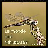 Le monde des minuscules 2015: Mise en beaute des Arthropodes (Calvendo Animaux) (French Edition)