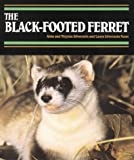 img - for The Black-Footed Ferret (Endangered in America) book / textbook / text book