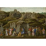 Canvas Prints Of Oil Painting ' Filippino Lippi - The Adoration Of The Kings,about 1480' 24 x 35 inch / 61 x 89 cm , Polyster Canvas Is For Gifts And Home Theater, Kitchen And Laundry Room Decoration