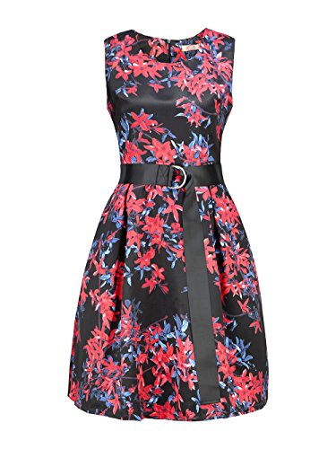 AIIT Womens Spring Floral Fit and Flare Dress With Adjust Sash Plus Size (XXXL=US14, Red) by AIIT