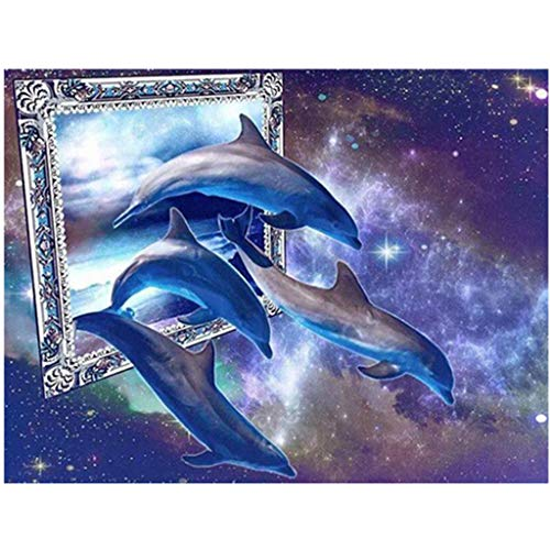Libobo30X40cm Embroidery Paintings Rhinestone Pasted DIY Diamond Painting Cross Stitch (C)
