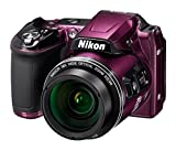 Nikon CoolPix L840 Digital Camera (Purple) – International Version (No Warranty) Review