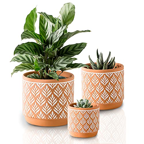 Plant Pots with Drainage Holes MIGGN 6 Inch+5 Inch+4 Inch Flower Pots Set of 3 Indoor Planter Decorative Plant Pots Succulent Flowerpot (Red)