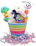 """""""Clucking"""" Cadbury Bunny Easter Basket with Spinning Ears Smarties Fan"""