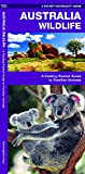 Australia Wildlife: A Folding Pocket Guide to Familiar Animals (Pocket Naturalist Guides)