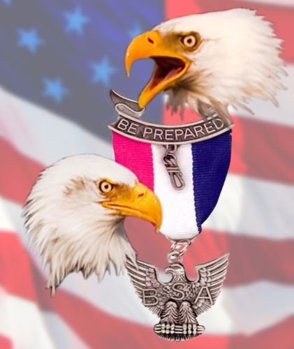 cakeusa-eagle-scout-ceremony-court-of-honor-be-prepared-birthday-1-2-size-frosting-sheet-cake-topper