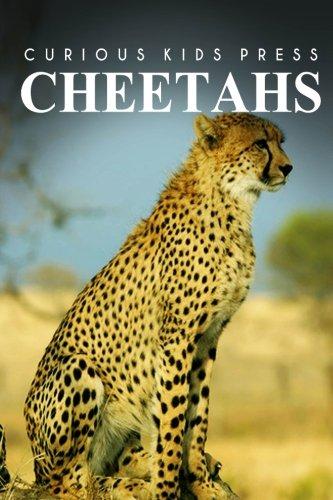 Cheetah Kids - Cheetah - Curious Kids Press