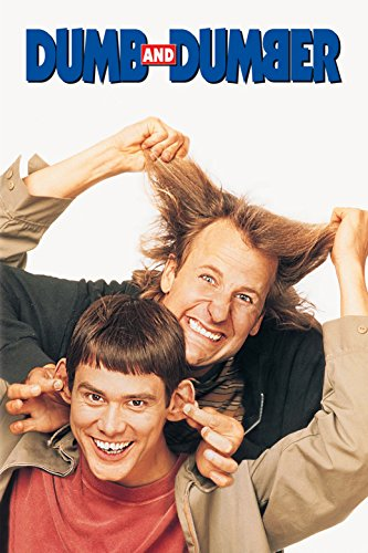Dumb and Dumber Fabric Cloth Rolled Wall Poster