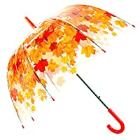 Kung Fu Smith Cute Clear Bubble Umbrella for Kids Girls & Boys, Auto Open
