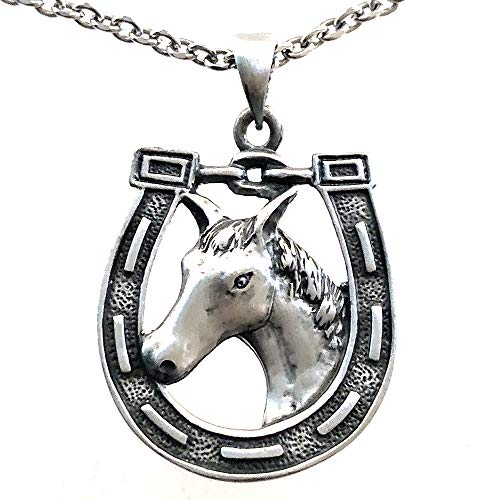 Ohdeal4U Horseshoe Western Good Luck Protection Magic Pewter Pendant Charm Amulet Medallion (Stainless Steel Chain)