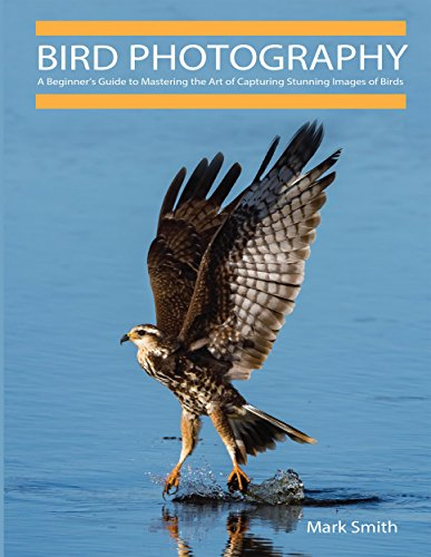 Bird Photography: A Beginner's Guide to Mastering the Art of Capturing Stunning Images of Birds