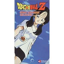 Dragonball Z - Great Saiyaman - Declaration