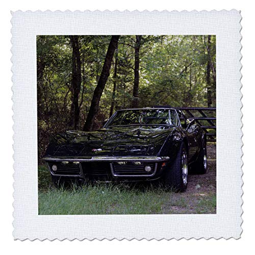 3dRose Stamp City - transportation - Photograph of a classic Corvette nestled in the woods. - 14x14 inch quilt square (qs_315608_5)