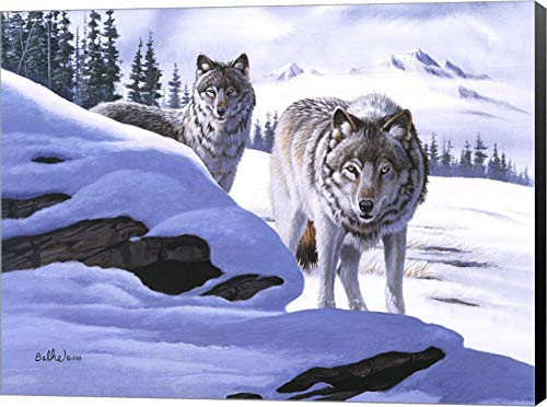 - Wolves on The Prowl by Don Balke Canvas Art Wall Picture, Museum Wrapped with Black Sides, 24 x 18 inches