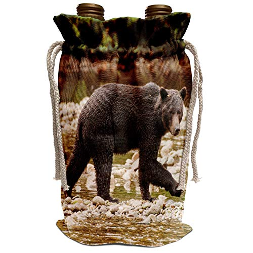 3dRose Danita Delimont - Michael DeFreitas - Bears - Grizzly bear fishing for salmon in Great Bear Rainforest, Canada. - Wine Bag (wbg_189070_1)