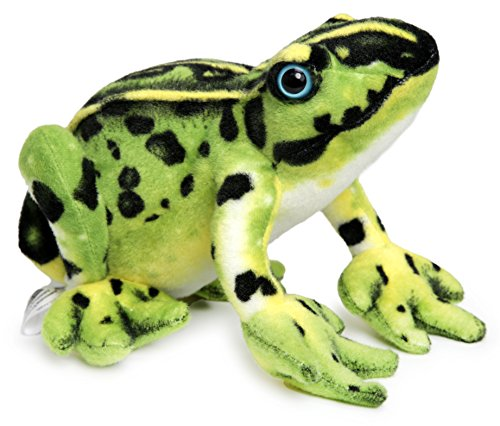 Fernando the Frog | 10 Inch Poison Dart Tree Toad Stuffed Animal Plush | By Tiger Tale Toys Plush Stuffed Frog