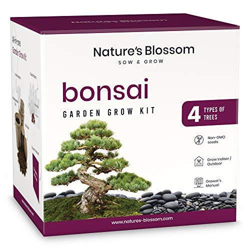Nature's Blossom Bonsai Tree Seed Starter Kit for Beginner Gardeners. A Complete Indoor Growing Set. Special Garden Gift Idea for Men and Women
