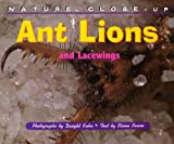Ant Lions and Lacewings, Dwight Kuhn and Elaine Pascoe, 1410303101