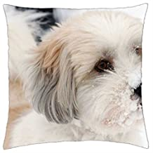 """iRocket - what is that white stuff - Throw Pillow Cover (18"""" x 18"""")"""
