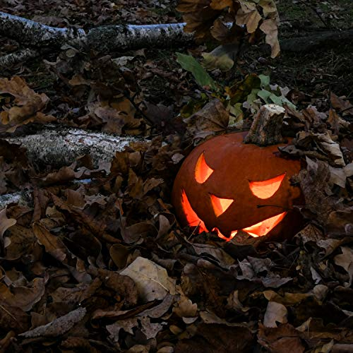 The Scariest Halloween Party Ever (Nightmarish Tracks for the Scariest Halloween Party)