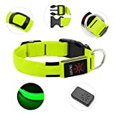 BSEEN LED Dog Collar, USB Rechargeable Light Up