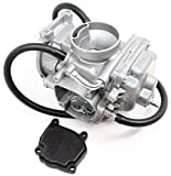 Arctic Cat 1998 1999 2000 ATV 98 99 00 300 2x4 4x4 Carburetor Complete Carb Assembly 0470-348 New OEM