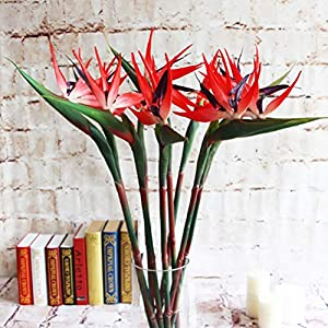 Warmter 32.5 Inch Large Elegant Bird of Paradise Artificial Flower for Home Office 3 Pcs (Red)
